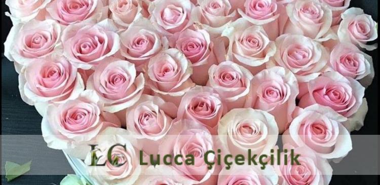 https://www.luccacicek.com.tr/